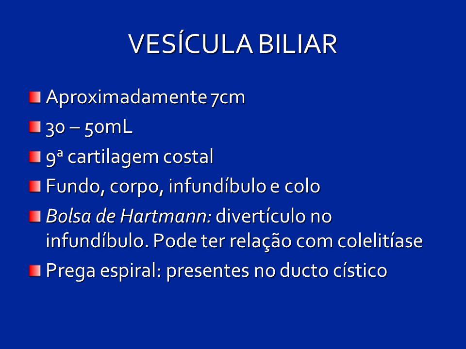 VESÍCULA BILIAR Aproximadamente 7cm 30 – 50mL 9a cartilagem costal