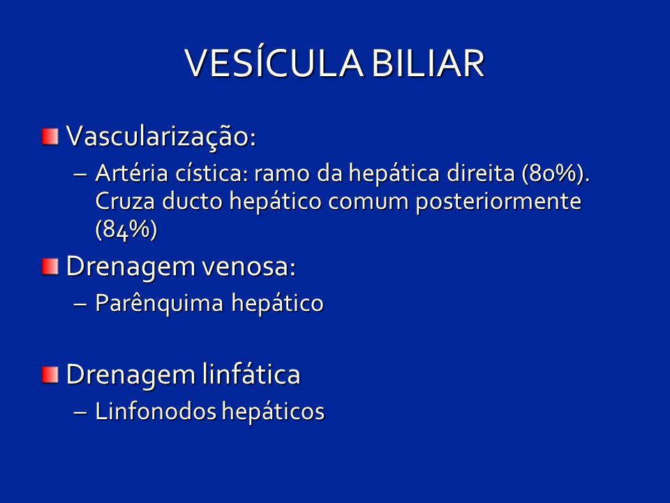 VESÍCULA BILIAR Vascularização: Drenagem venosa: Drenagem linfática