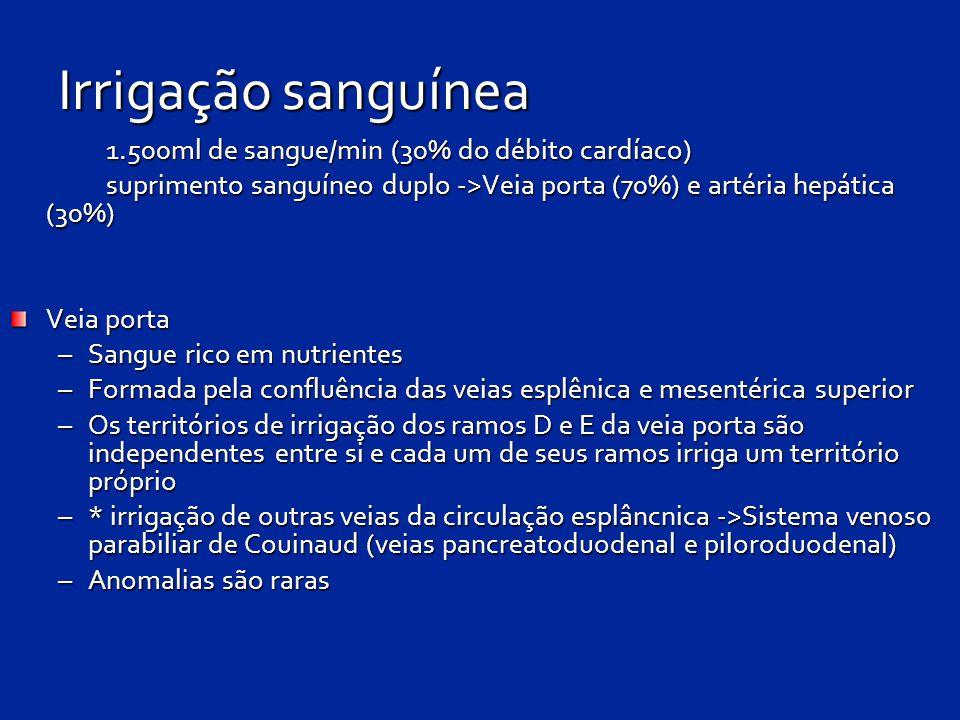 Irrigação sanguínea 1.500ml de sangue/min (30% do débito cardíaco)