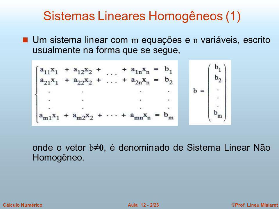 Sistemas Lineares Homogêneos (1)