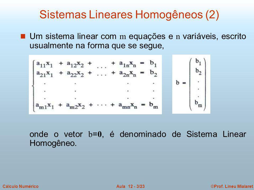 Sistemas Lineares Homogêneos (2)