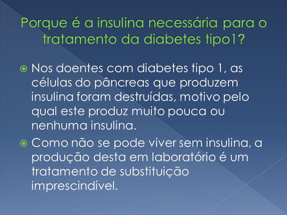 Porque é a insulina necessária para o tratamento da diabetes tipo1