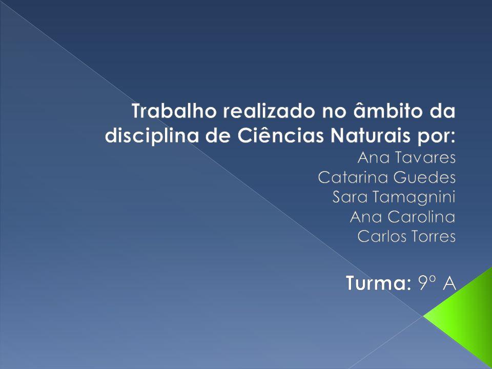 Trabalho realizado no âmbito da disciplina de Ciências Naturais por: