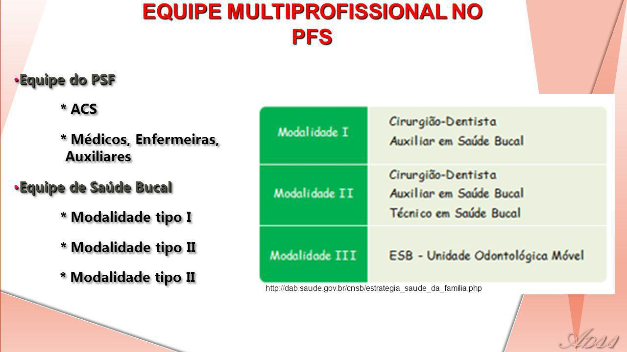 EQUIPE MULTIPROFISSIONAL NO PFS