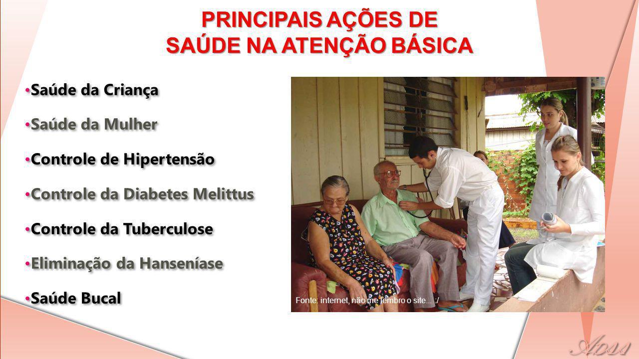 PRINCIPAIS AÇÕES DE SAÚDE NA ATENÇÃO BÁSICA