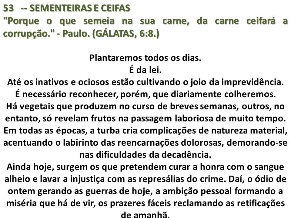 53 -- SEMENTEIRAS E CEIFAS