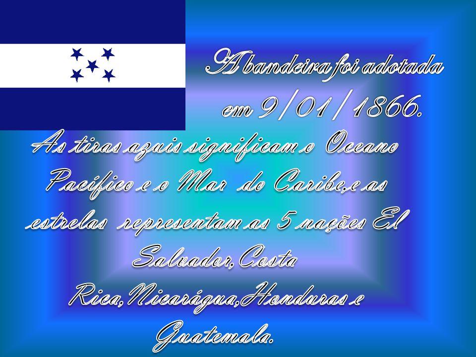 A bandeira foi adotada em 9/01/1866.
