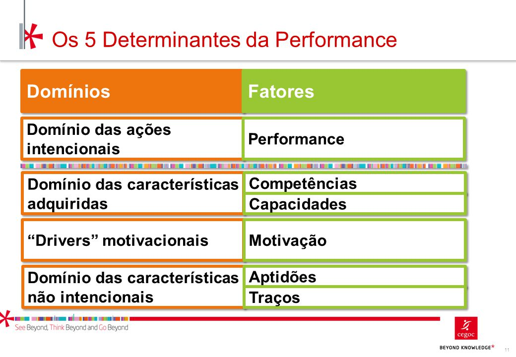 Os 5 Determinantes da Performance