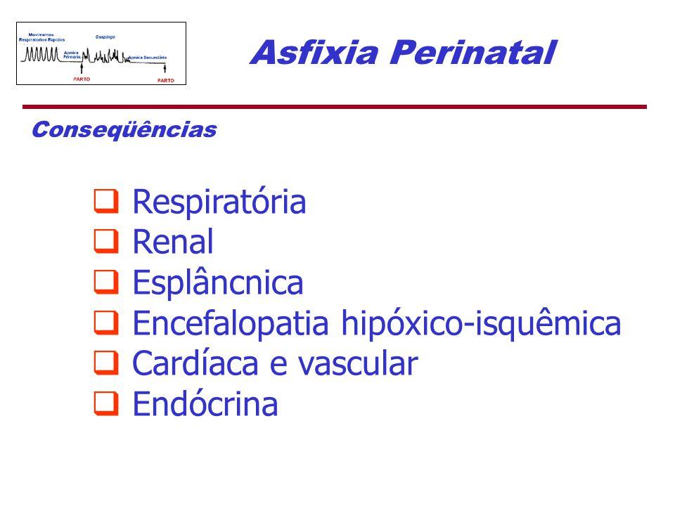 Encefalopatia hipóxico-isquêmica Cardíaca e vascular Endócrina