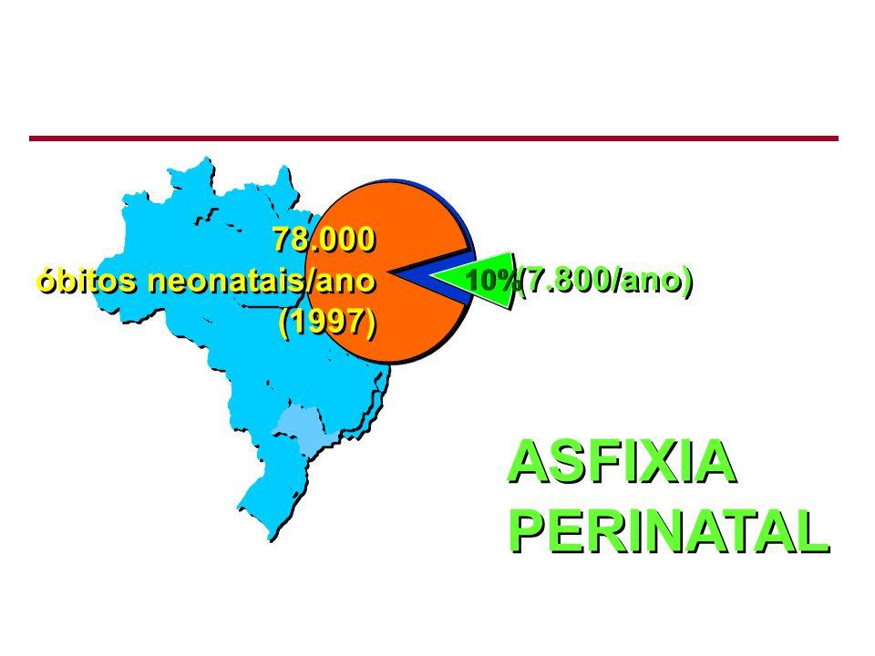 ASFIXIA PERINATAL 78.000 óbitos neonatais/ano (1997) (7.800/ano) 10%