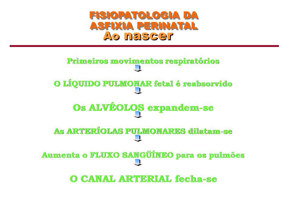 Ao nascer FISIOPATOLOGIA DA ASFIXIA PERINATAL Os ALVÉOLOS expandem-se