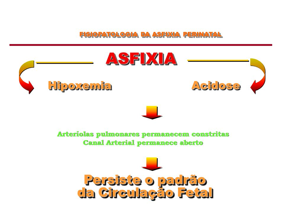 ASFIXIA Persiste o padrão da Circulação Fetal Hipoxemia Acidose