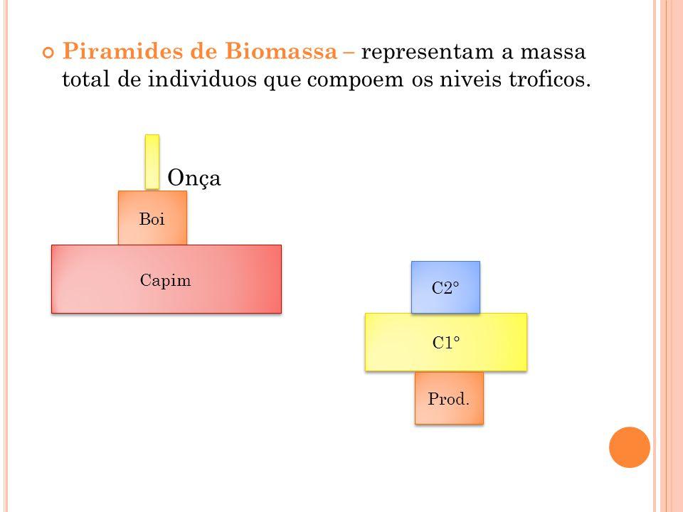 Piramides de Biomassa – representam a massa total de individuos que compoem os niveis troficos.
