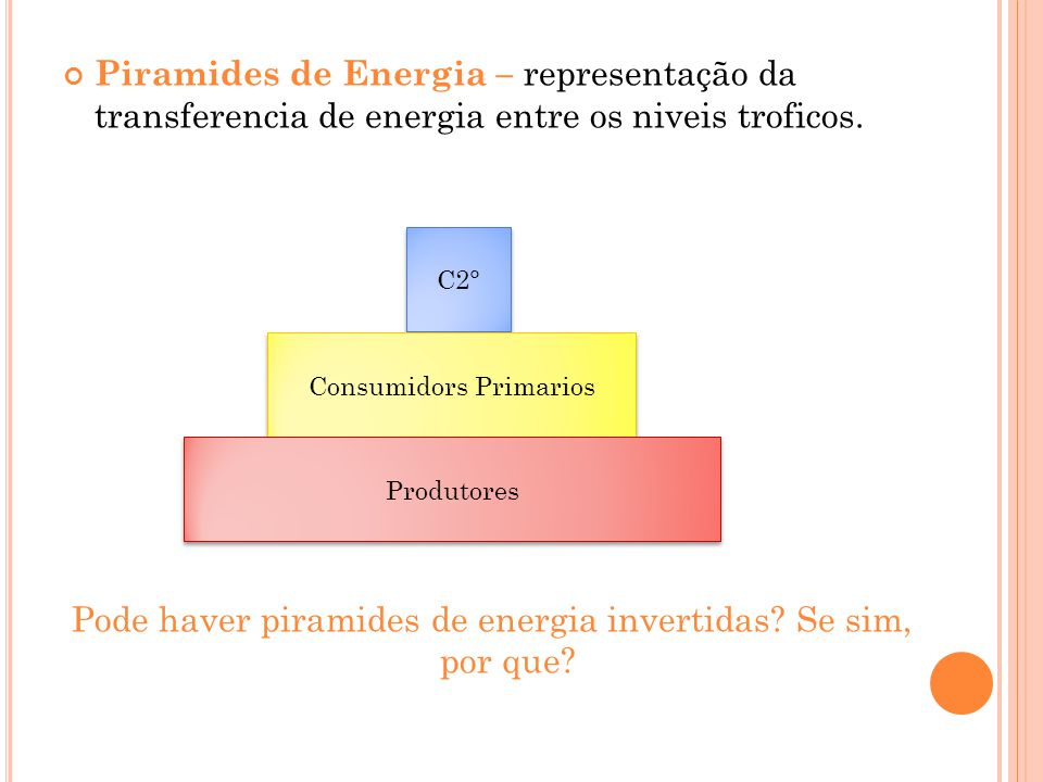 Pode haver piramides de energia invertidas Se sim, por que