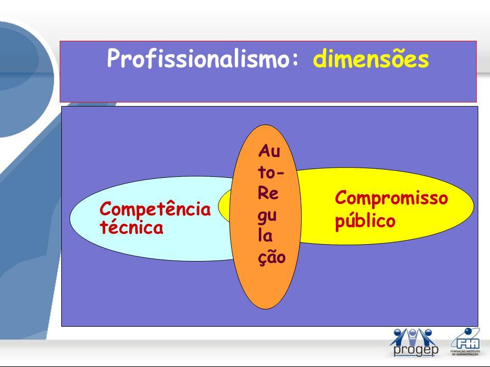 Profissionalismo: dimensões