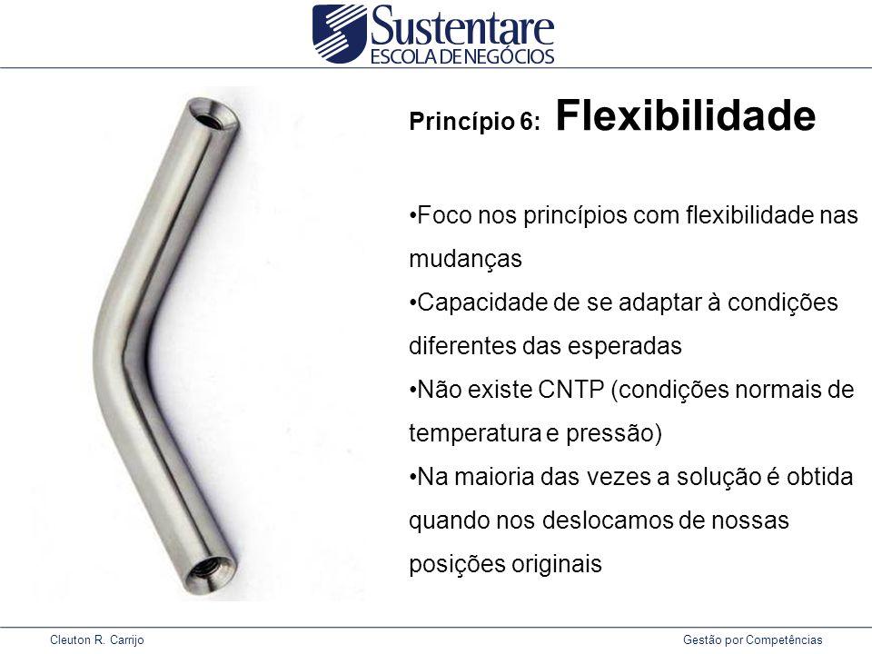 Princípio 6: Flexibilidade