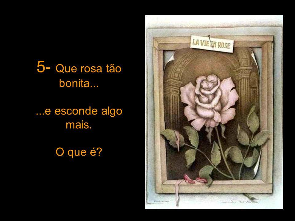 5- Que rosa tão bonita... ...e esconde algo mais. O que é