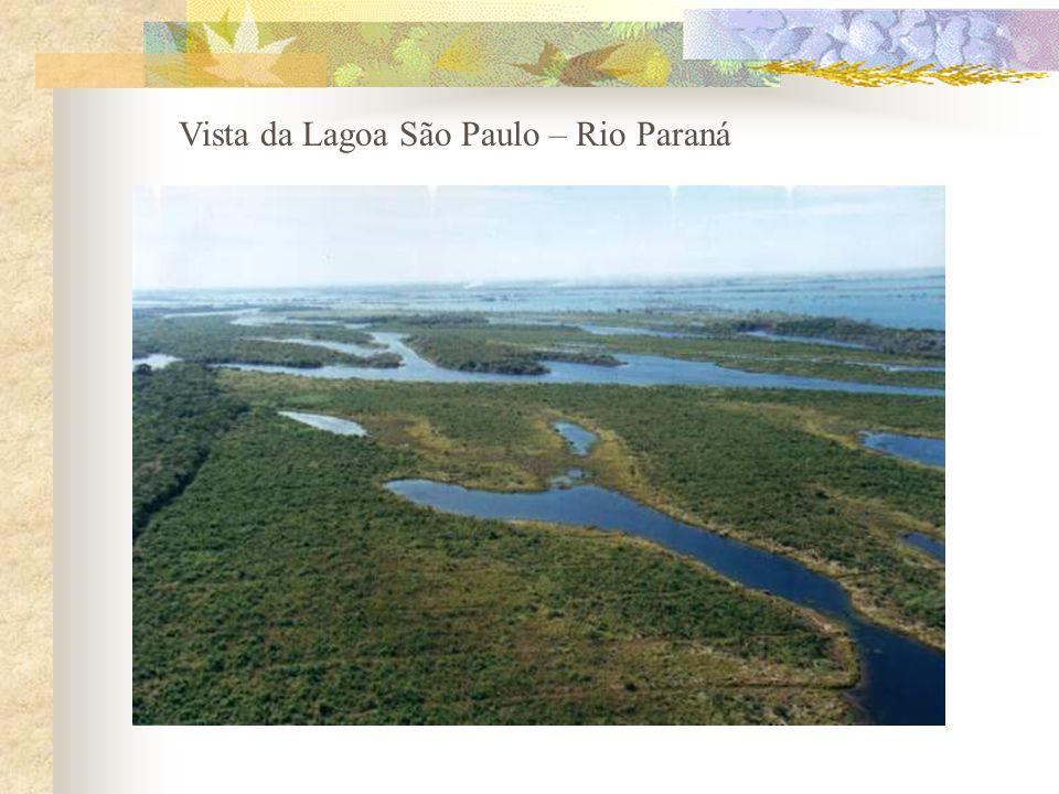 Vista da Lagoa São Paulo – Rio Paraná