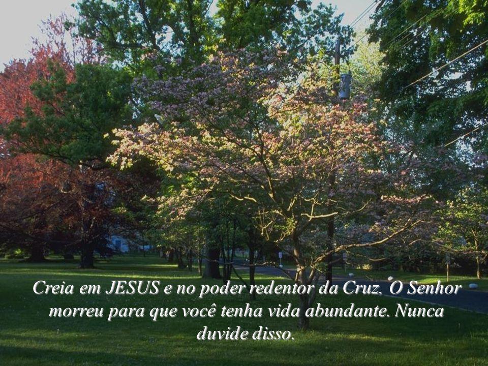Creia em JESUS e no poder redentor da Cruz