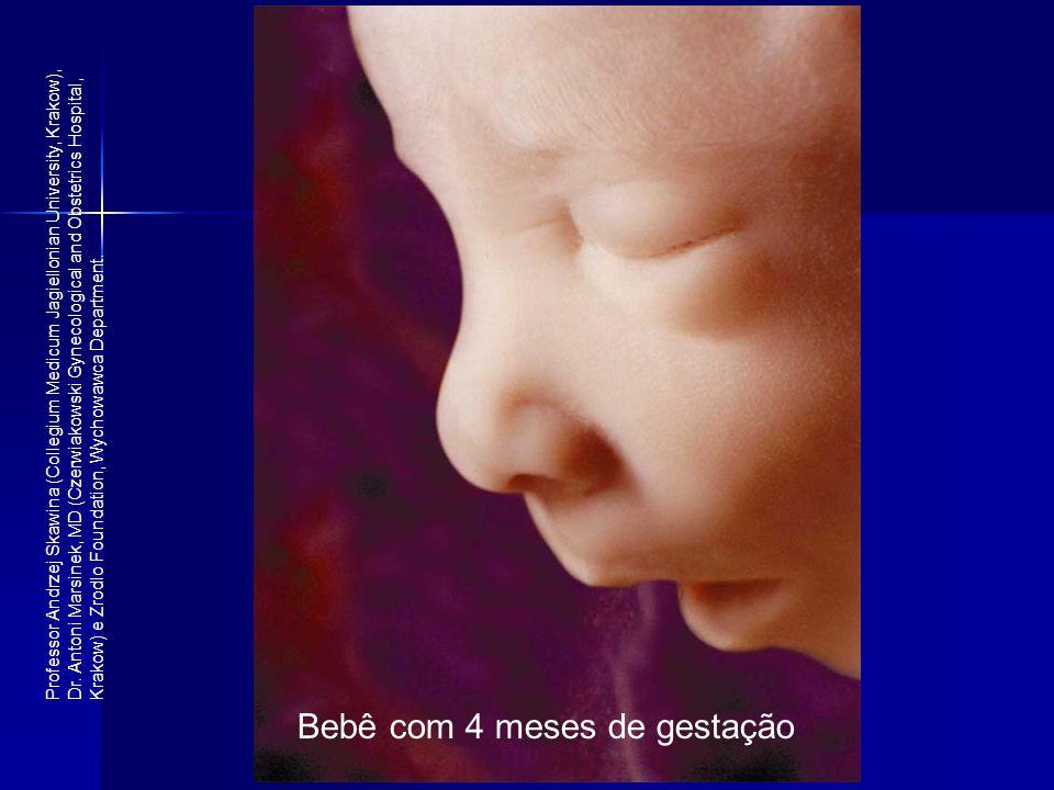 Bebê com 4 meses de gestação