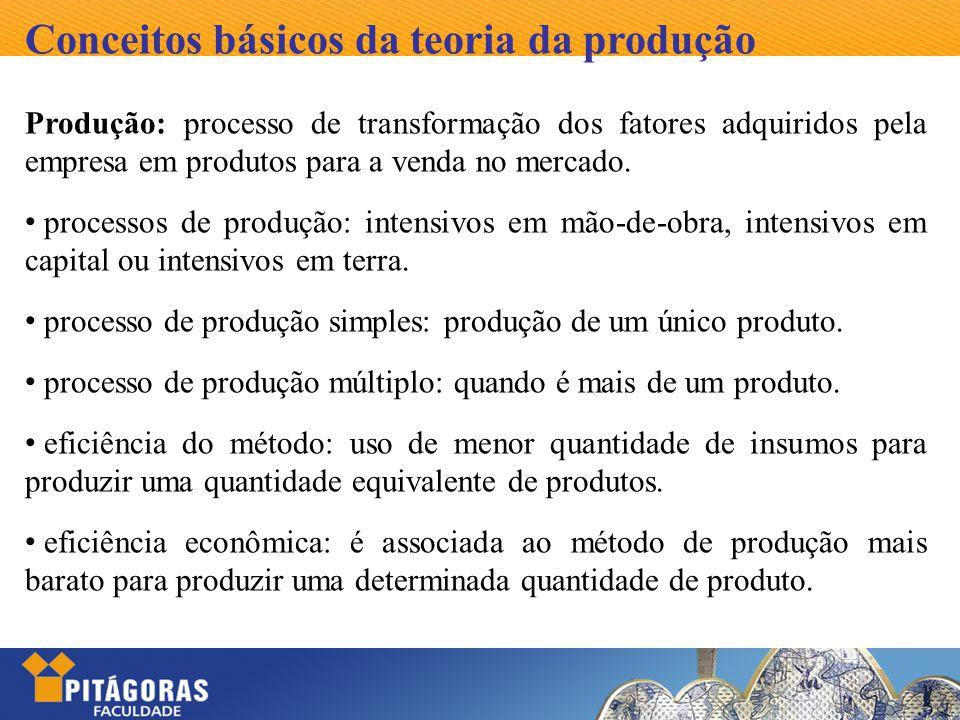 Conceitos básicos da teoria da produção