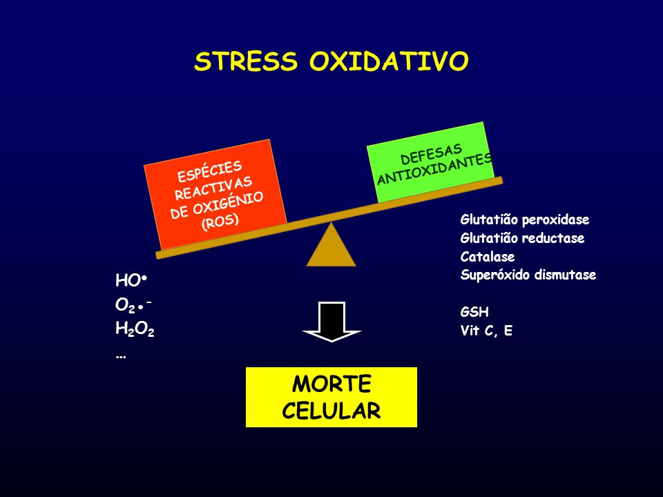 ESPÉCIES REACTIVAS DE OXIGÉNIO (ROS) DEFESAS ANTIOXIDANTES
