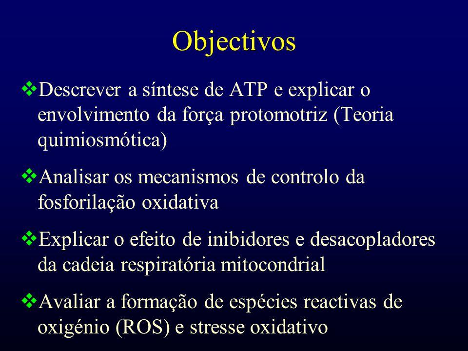 Objectivos Descrever a síntese de ATP e explicar o envolvimento da força protomotriz (Teoria quimiosmótica)