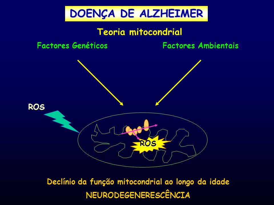 Declínio da função mitocondrial ao longo da idade NEURODEGENERESCÊNCIA