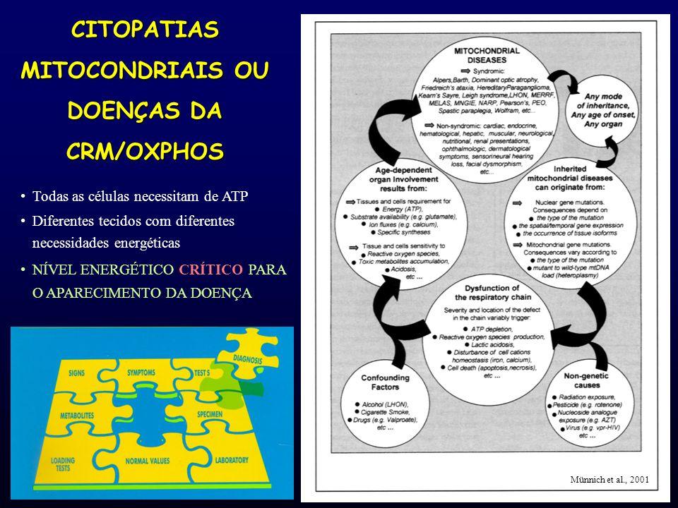 CITOPATIAS MITOCONDRIAIS OU DOENÇAS DA CRM/OXPHOS