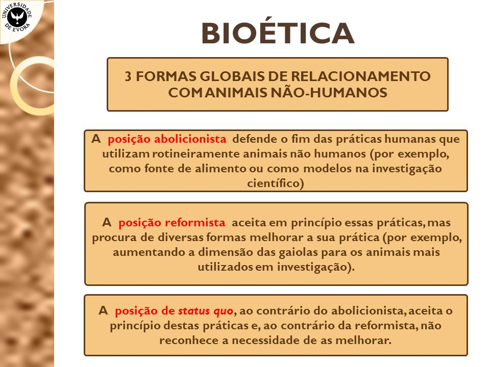 3 FORMAS GLOBAIS DE RELACIONAMENTO COM ANIMAIS NÃO-HUMANOS