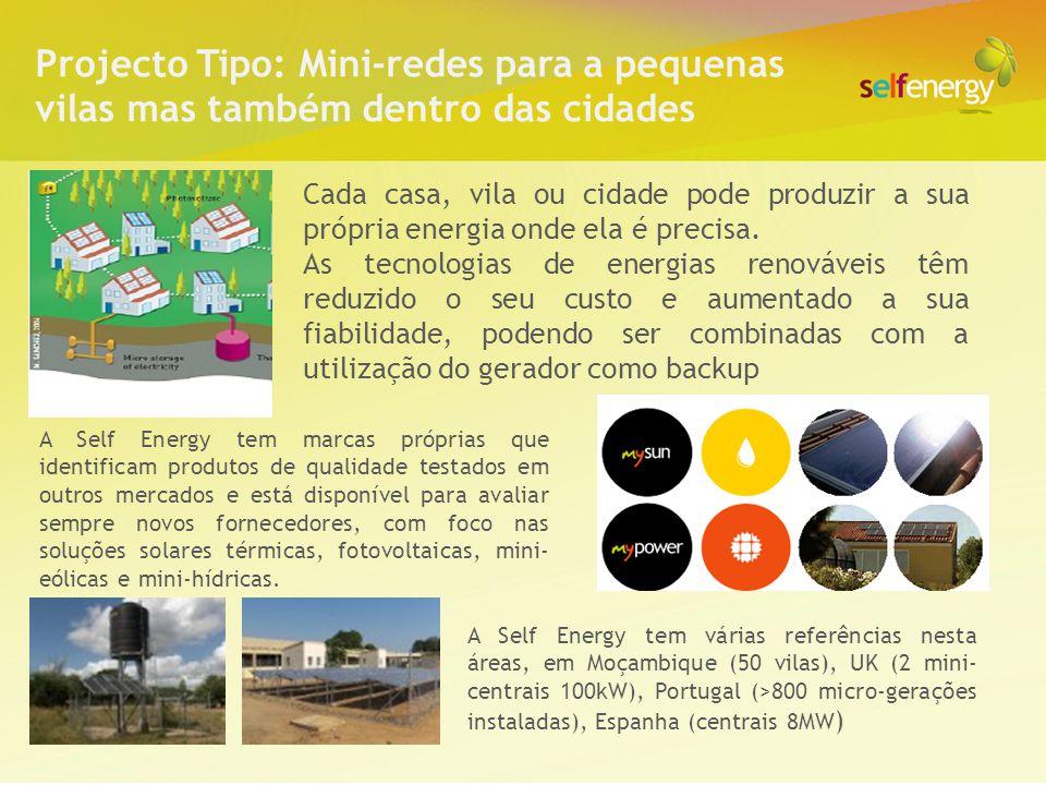 Projecto Tipo: Mini-redes para a pequenas vilas mas também dentro das cidades