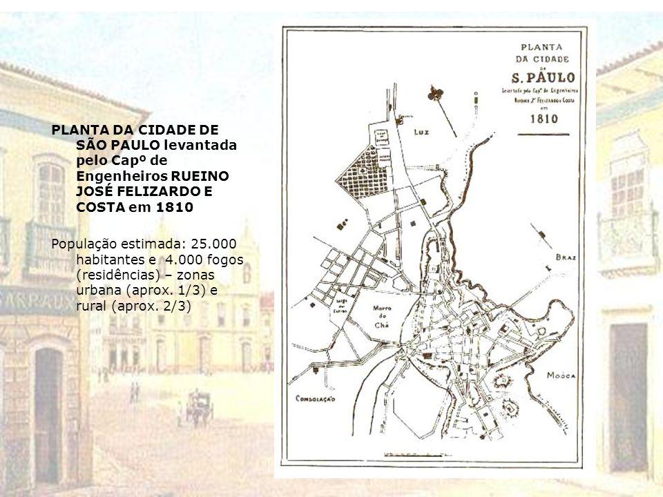 PLANTA DA CIDADE DE SÃO PAULO levantada pelo Capº de Engenheiros RUEINO JOSÉ FELIZARDO E COSTA em 1810