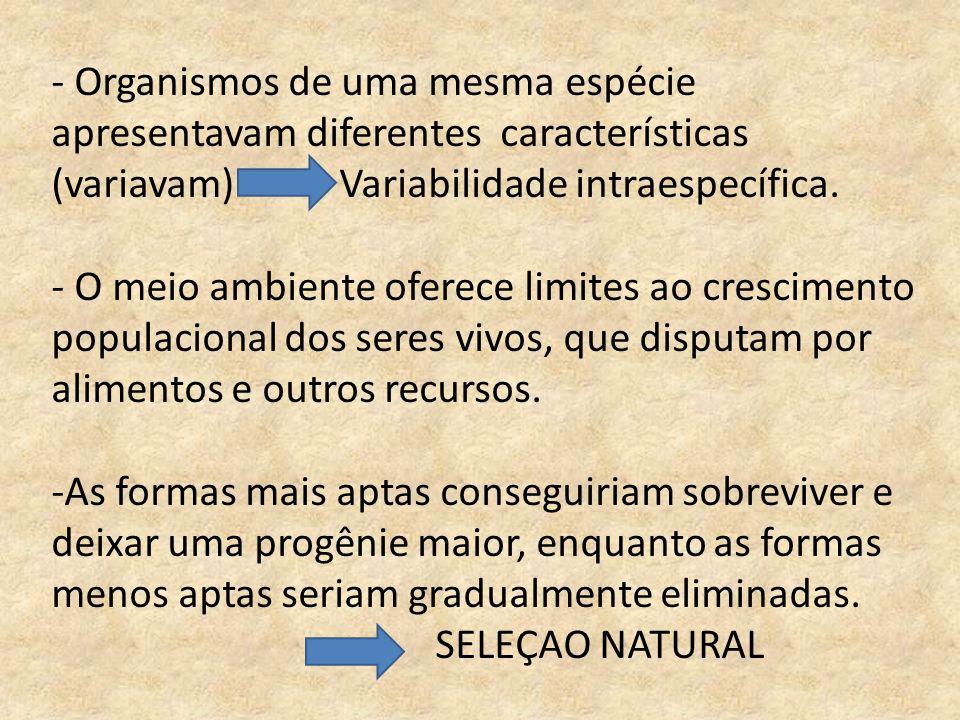 - Organismos de uma mesma espécie apresentavam diferentes características (variavam) Variabilidade intraespecífica.