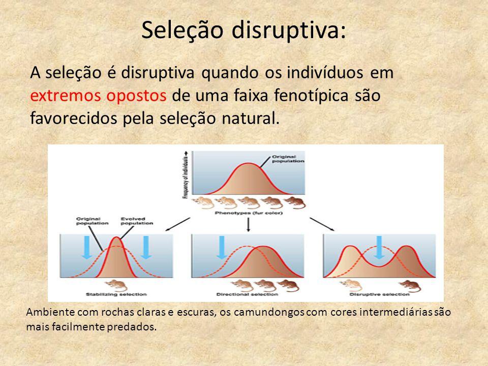 Seleção disruptiva: A seleção é disruptiva quando os indivíduos em extremos opostos de uma faixa fenotípica são favorecidos pela seleção natural.