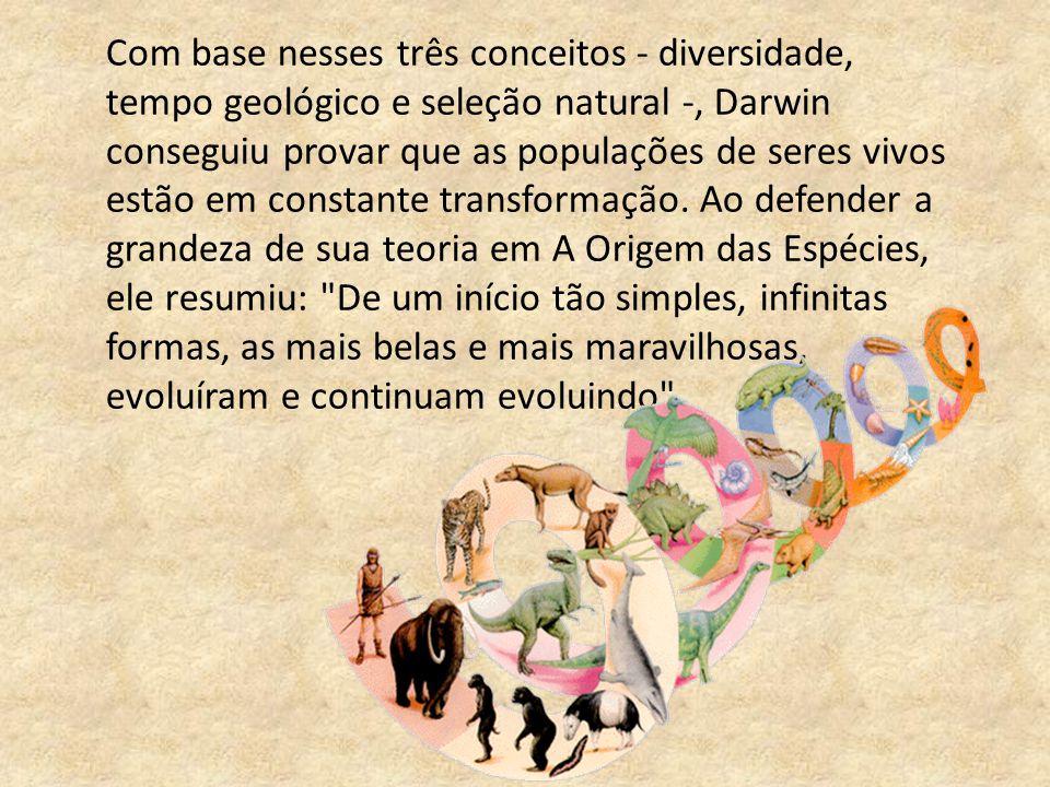 Com base nesses três conceitos - diversidade, tempo geológico e seleção natural -, Darwin conseguiu provar que as populações de seres vivos estão em constante transformação.