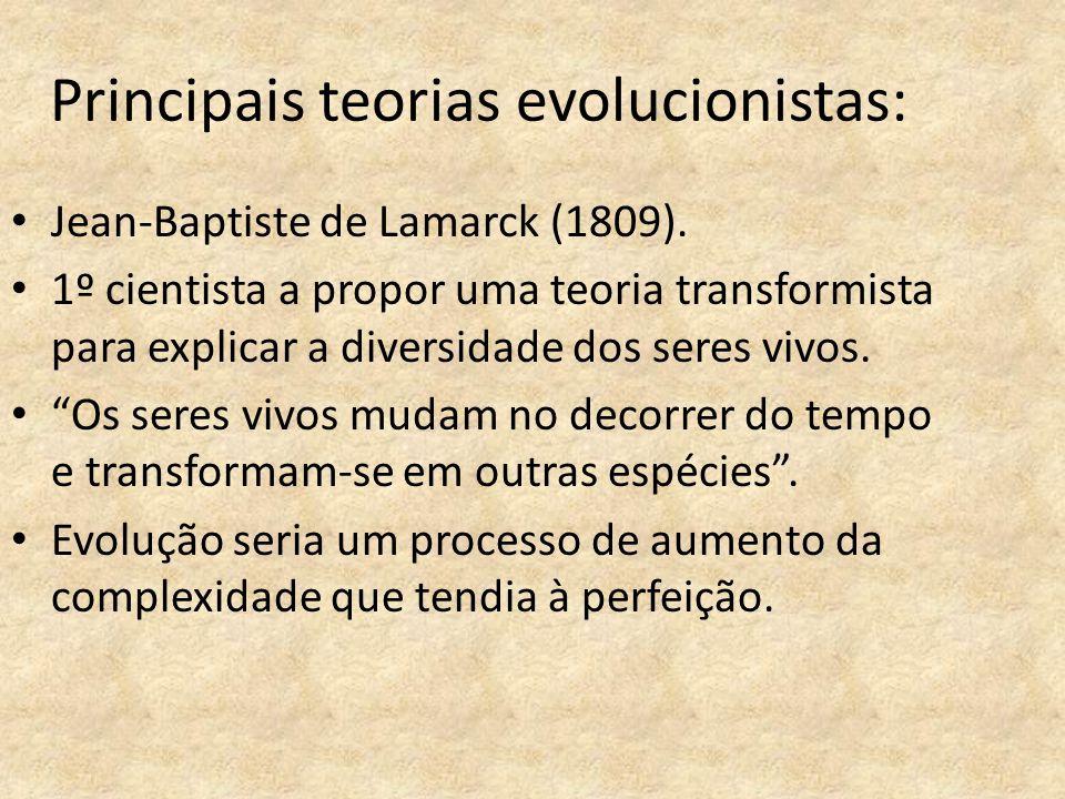 Principais teorias evolucionistas: