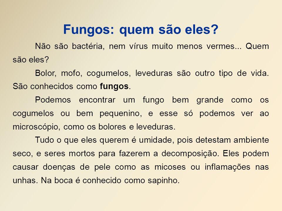 Fungos: quem são eles Não são bactéria, nem vírus muito menos vermes... Quem são eles