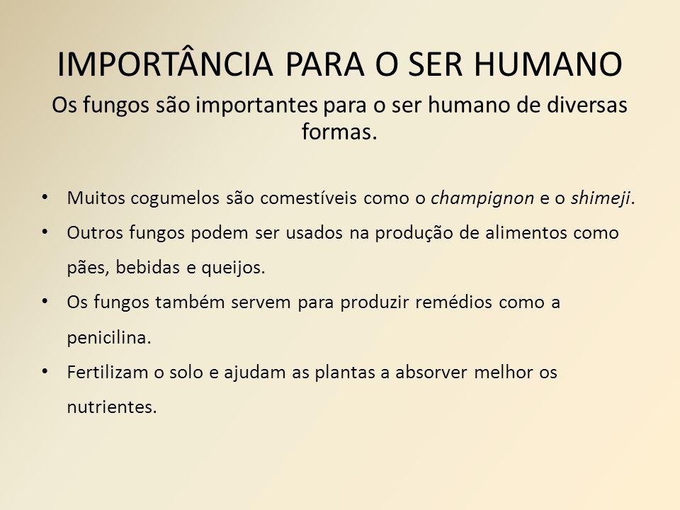 IMPORTÂNCIA PARA O SER HUMANO