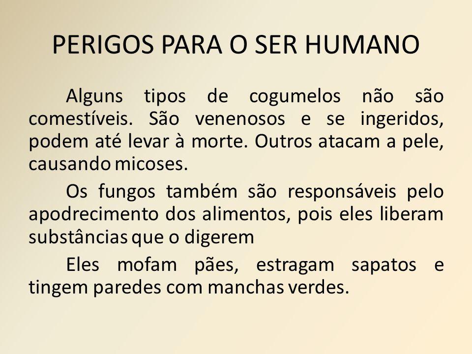 PERIGOS PARA O SER HUMANO