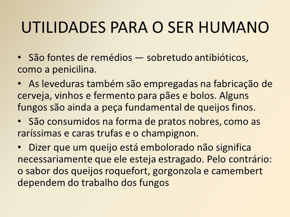 UTILIDADES PARA O SER HUMANO