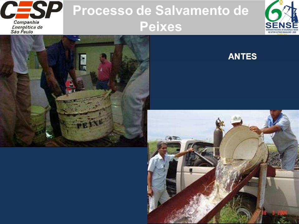 Processo de Salvamento de Peixes