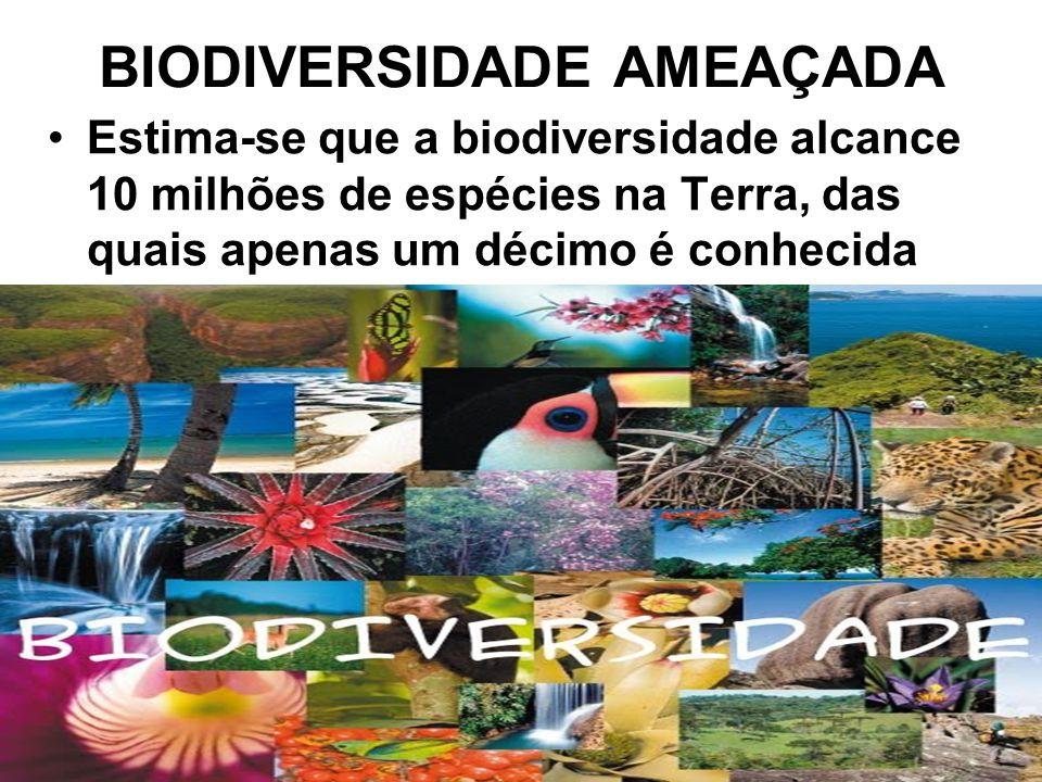 BIODIVERSIDADE AMEAÇADA