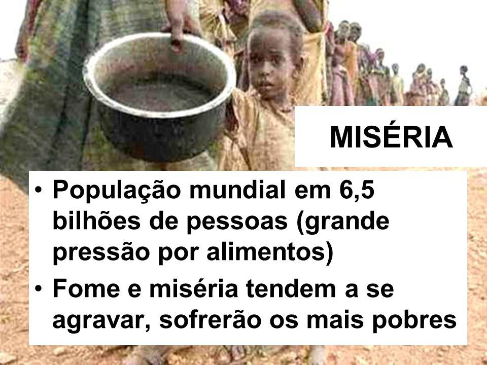 MISÉRIA População mundial em 6,5 bilhões de pessoas (grande pressão por alimentos) Fome e miséria tendem a se agravar, sofrerão os mais pobres.