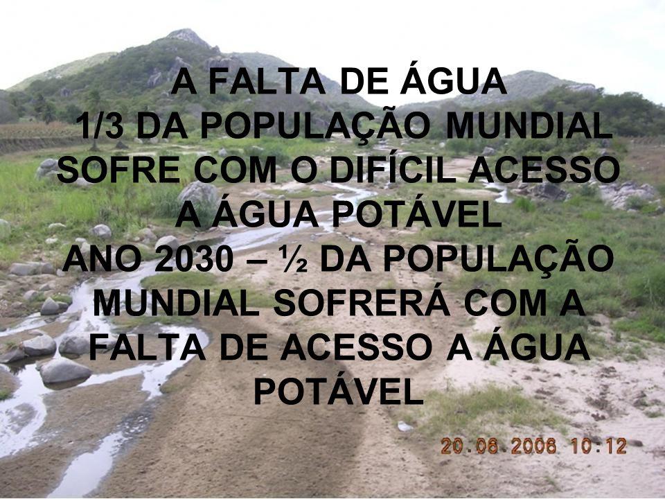 A FALTA DE ÁGUA 1/3 DA POPULAÇÃO MUNDIAL SOFRE COM O DIFÍCIL ACESSO A ÁGUA POTÁVEL ANO 2030 – ½ DA POPULAÇÃO MUNDIAL SOFRERÁ COM A FALTA DE ACESSO A ÁGUA POTÁVEL