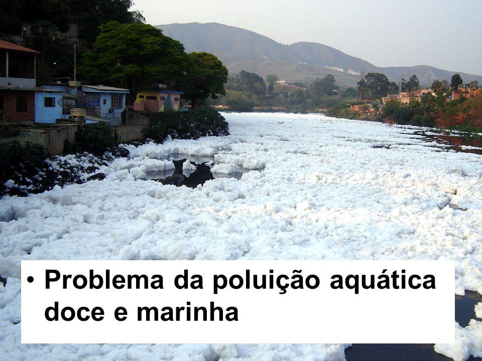 Problema da poluição aquática doce e marinha
