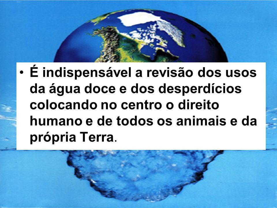É indispensável a revisão dos usos da água doce e dos desperdícios colocando no centro o direito humano e de todos os animais e da própria Terra.