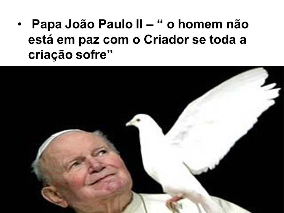 Papa João Paulo II – o homem não está em paz com o Criador se toda a criação sofre