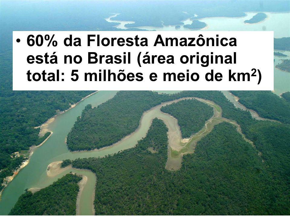 60% da Floresta Amazônica está no Brasil (área original total: 5 milhões e meio de km2)