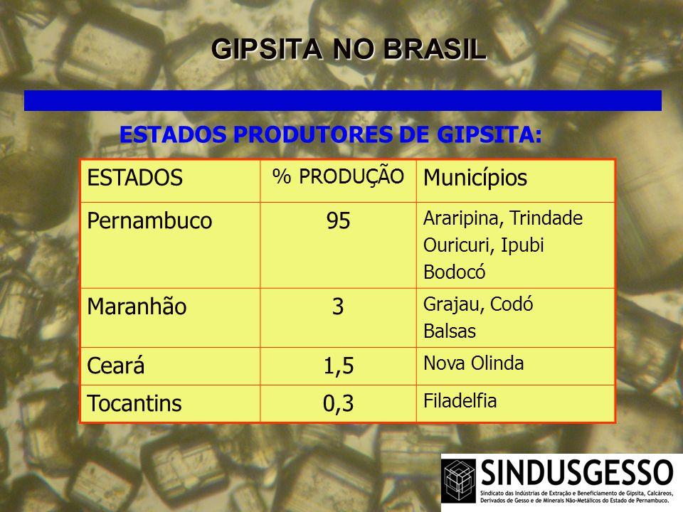 GIPSITA NO BRASIL ESTADOS PRODUTORES DE GIPSITA: ESTADOS Municípios