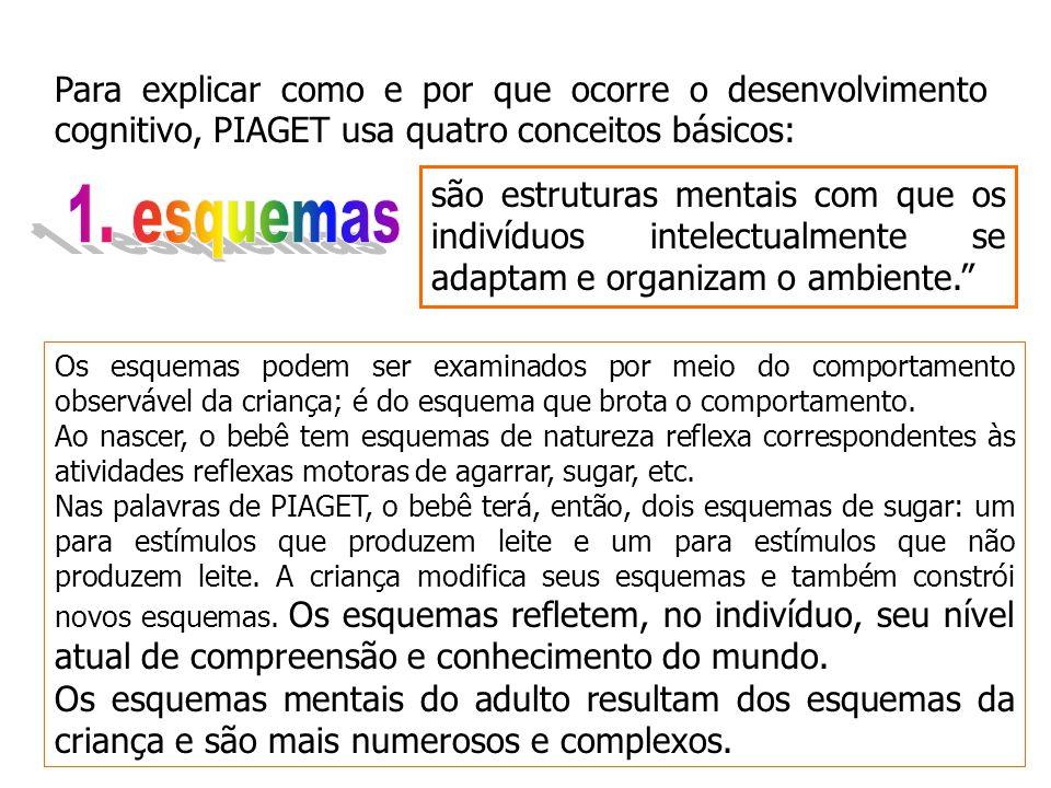 Para explicar como e por que ocorre o desenvolvimento cognitivo, PIAGET usa quatro conceitos básicos: